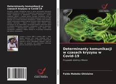 Bookcover of Determinanty komunikacji w czasach kryzysu w Covid-19