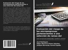 Portada del libro de Evaluación del riesgo de las microempresas pertenecientes a una selección de ramas del
