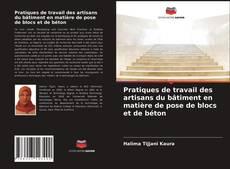 Bookcover of Pratiques de travail des artisans du bâtiment en matière de pose de blocs et de béton
