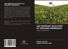 Couverture de LES ENGRAIS SILICATÉS ET ORGANO-MINÉRAUX