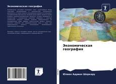 Bookcover of Экономическая география