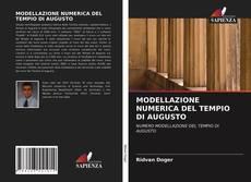 MODELLAZIONE NUMERICA DEL TEMPIO DI AUGUSTO的封面