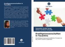 Bookcover of Kreditgenossenschaften in Tocantins