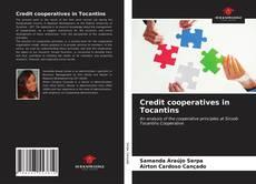 Credit cooperatives in Tocantins kitap kapağı