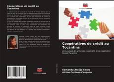 Coopératives de crédit au Tocantins kitap kapağı
