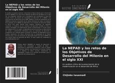Bookcover of La NEPAD y los retos de los Objetivos de Desarrollo del Milenio en el siglo XXI