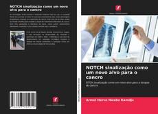 Bookcover of NOTCH sinalização como um novo alvo para o cancro