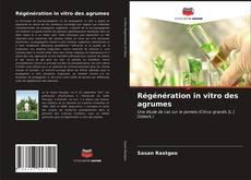 Copertina di Régénération in vitro des agrumes