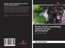 Bookcover of Study of bat assemblage against human perturbation