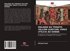 Buchcover von MALADIE DU TOMATO YELLOW LEAFCURL VIRUS (TYLCV) AU GHANA