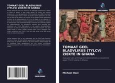 Bookcover of DE ZIEKTE VAN HET TOMATENGEELBLADKORRELVIRUS (TYLCV) IN GHANA