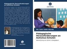 Обложка Pädagogische Herausforderungen an Autismus-Schulen