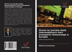 Bookcover of Ocena na szeroką skalę intermodalnych sieci transportu towarowego w Europie