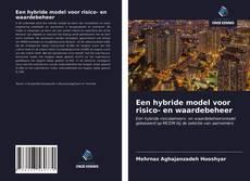 Buchcover von Een hybride model voor risico- en waardebeheer
