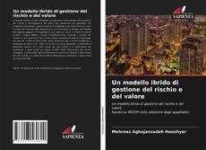 Capa do livro de Un modello ibrido di gestione del rischio e del valore