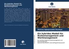Ein hybrides Modell für Risikomanagement und Wertmanagement kitap kapağı