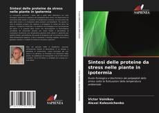 Bookcover of Sintesi delle proteine da stress nelle piante in ipotermia