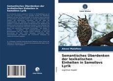 Buchcover von Semantisches Überdenken der lexikalischen Einheiten in Samoilovs Lyrik