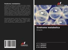 Portada del libro de Sindrome metabolica