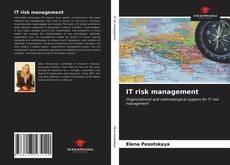 IT risk management kitap kapağı
