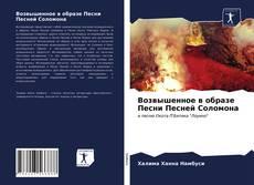 Bookcover of Возвышенное в образе Песни Песней Соломона