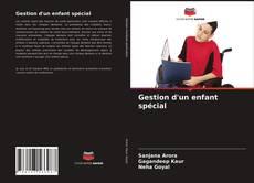 Bookcover of Gestion d'un enfant spécial
