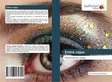 Bookcover of Entre cejas