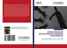 OTİZM SPEKTRUM BOZUKLUĞUNDA PROBLEM DAVRANIŞLAR kitap kapağı