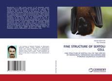 Bookcover of FINE STRUCTURE OF SERTOLI CELL
