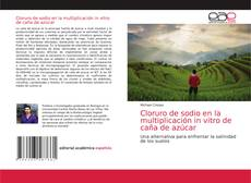 Buchcover von Cloruro de sodio en la multiplicación in vitro de caña de azúcar