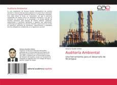 Copertina di Auditoría Ambiental