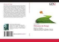 Bookcover of Métodos de Riego