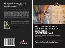 Bookcover of PROTEZIONE PENALE DEI BENI GIURIDICI DI CARATTERE INTERNAZIONALE