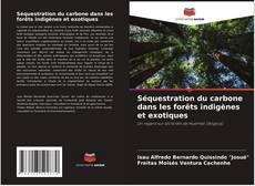 Couverture de Séquestration du carbone dans les forêts indigènes et exotiques