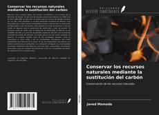 Capa do livro de Conservar los recursos naturales mediante la sustitución del carbón
