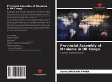 Borítókép a  Provincial Assembly of Maniema in DR Congo - hoz