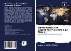 Bookcover of Провинциальная ассамблея Маниема в ДР Конго