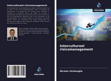 Обложка Intercultureel risicomanagement