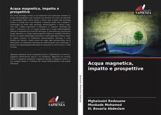 Copertina di Acqua magnetica, impatto e prospettive