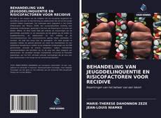 Bookcover of BEHANDELING VAN JEUGDDELINQUENTIE EN RISICOFACTOREN VOOR RECIDIVE