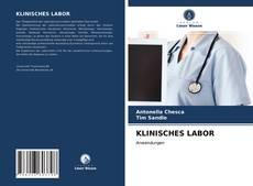 Bookcover of KLINISCHES LABOR