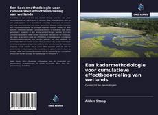 Bookcover of Een kadermethodologie voor cumulatieve effectbeoordeling van wetlands