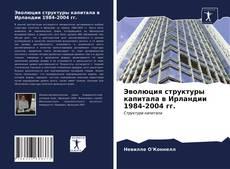 Bookcover of Эволюция структуры капитала в Ирландии 1984-2004 гг.