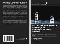 Copertina di Micropolítica del proceso de trabajo en la estrategia de salud familiar