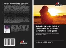 Copertina di Salario, produttività e condizioni di vita dei lavoratori in Nigeria