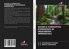 Copertina di RICERCA FORMATIVA: ESPERIENZE DI INGEGNERIA AMBIENTALE