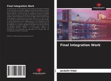 Final Integration Work的封面