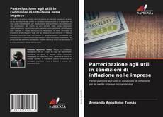 Partecipazione agli utili in condizioni di inflazione nelle imprese kitap kapağı