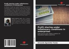 Bookcover of Profit sharing under inflationary conditions in enterprises