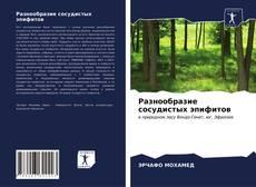 Bookcover of Разнообразие сосудистых эпифитов